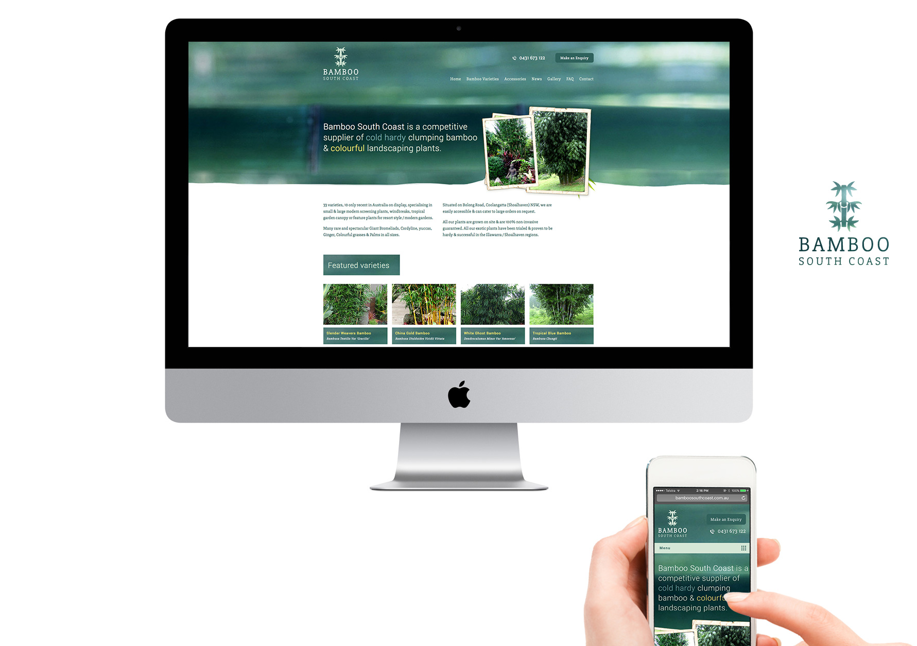 Bamboo South Coast - Branding and web design