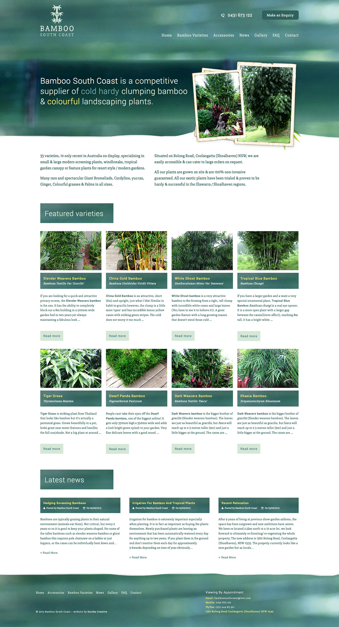 Bamboo South Coast web design and development