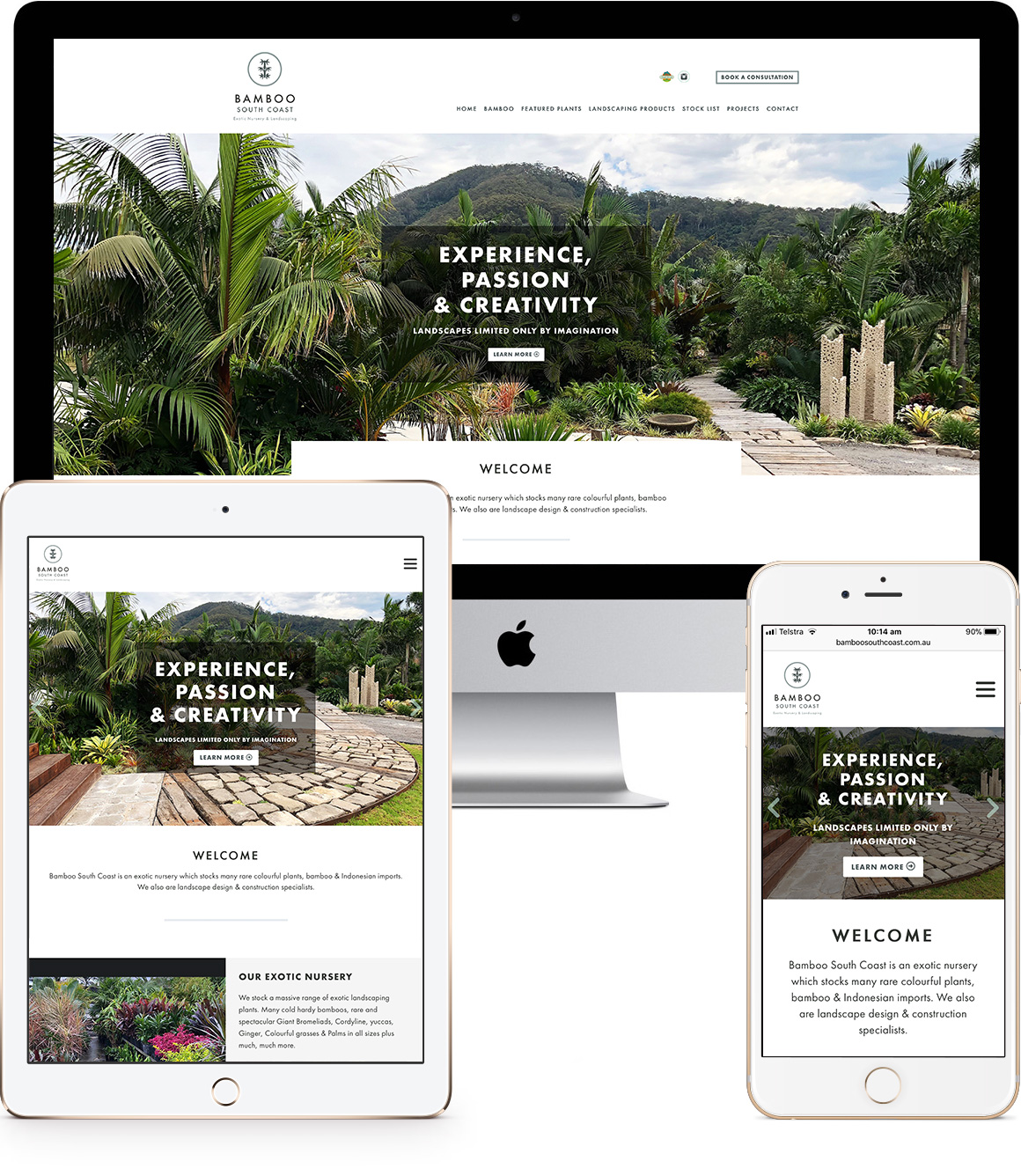 Bamboo South Coast Website Design and Development